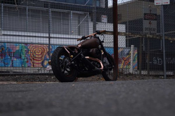 The Copperhead Harley Davidson Street 500